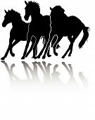 Gallery For > Horse Stampede Clipart.