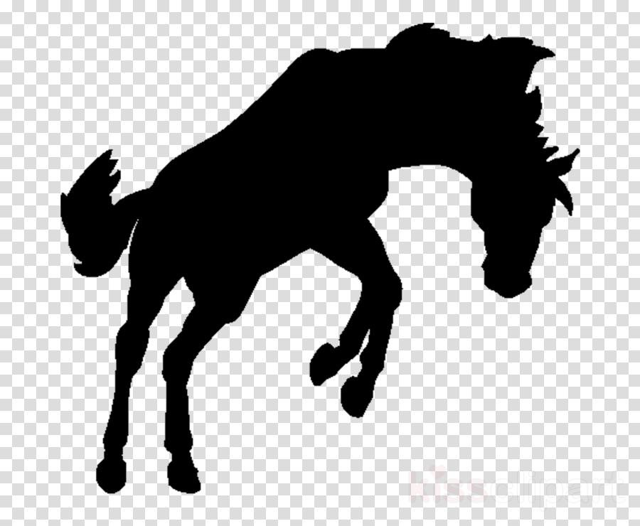 horse mane silhouette stallion tail clipart.