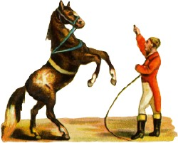 Horse training clipart.