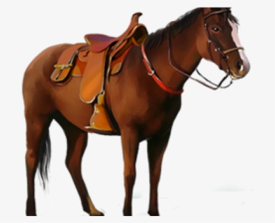Free Saddle Clip Art with No Background.