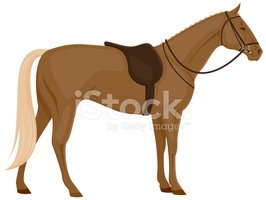 Horse With Saddle Stock Vector.