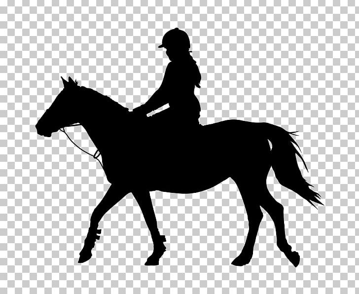 Horse&Rider Equestrian Silhouette PNG, Clipart, Animals, Bit.