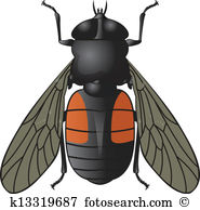 Horsefly Clipart and Illustration. 23 horsefly clip art vector EPS.