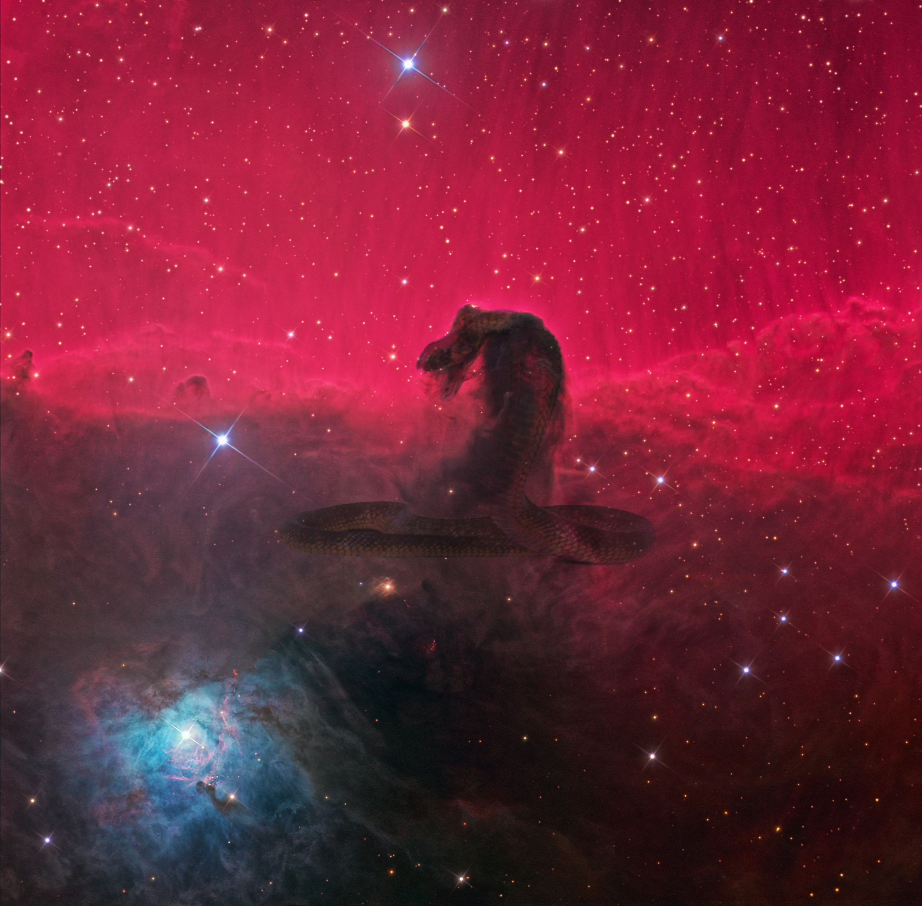 The Horsehead Nebula in Infrared from Hubble : space.