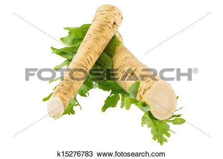 Stock Photo of Horseradish and radish leaves k15276783.