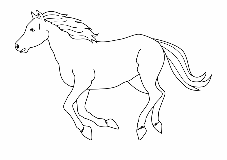 Horses clipart equine, Horses equine Transparent FREE for.