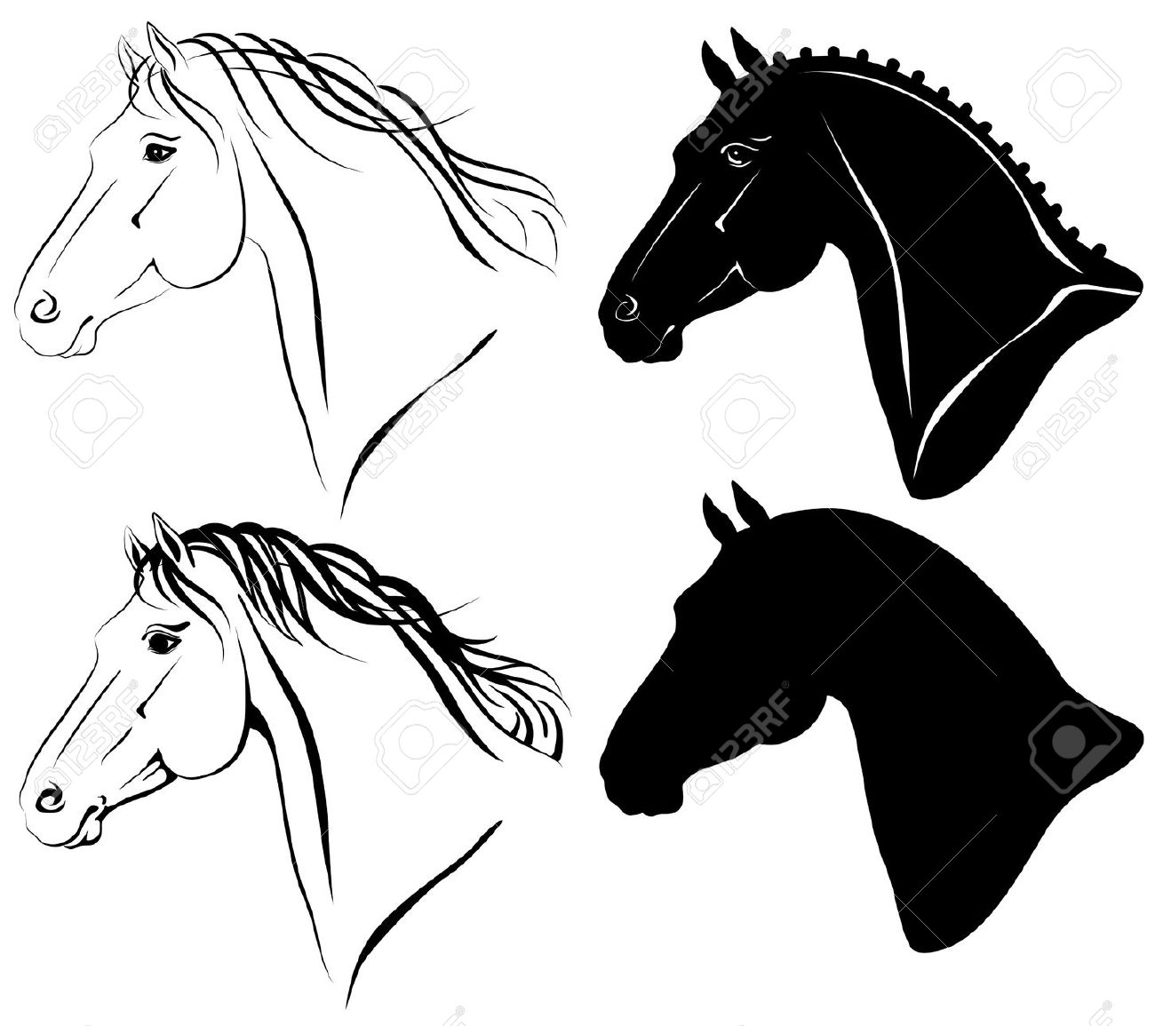 10,070 Horse Head Stock Vector Illustration And Royalty Free Horse.