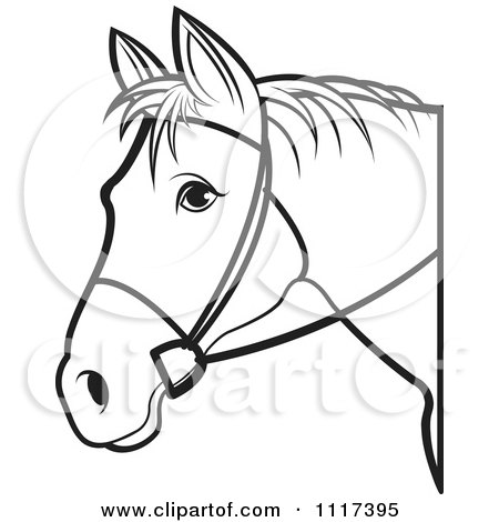 Black And White Horse Head With Reins 1 Posters, Art Prints by Lal.