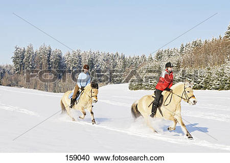 Stock Photography of two girls riding on Norwegian Fjord horses in.