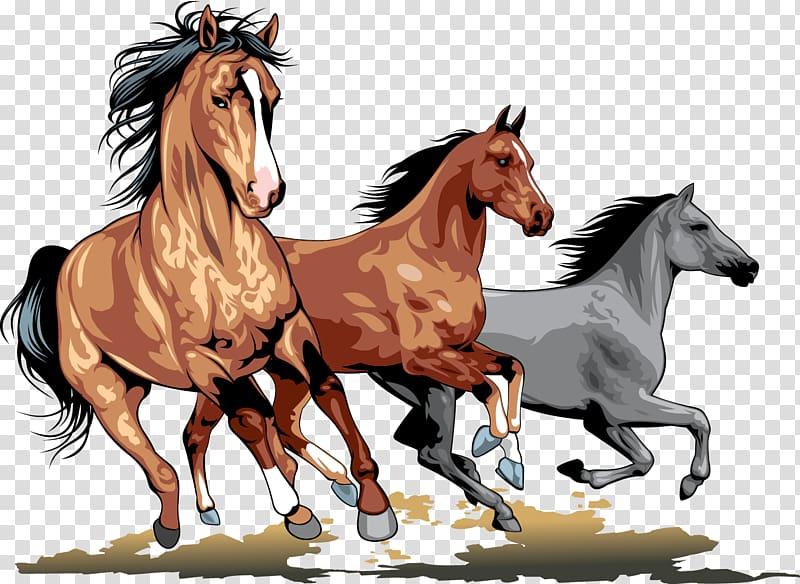 Three brown and gray horses running illustration, Wild horse , horse.