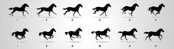 Best Running Horse Illustrations, Royalty.