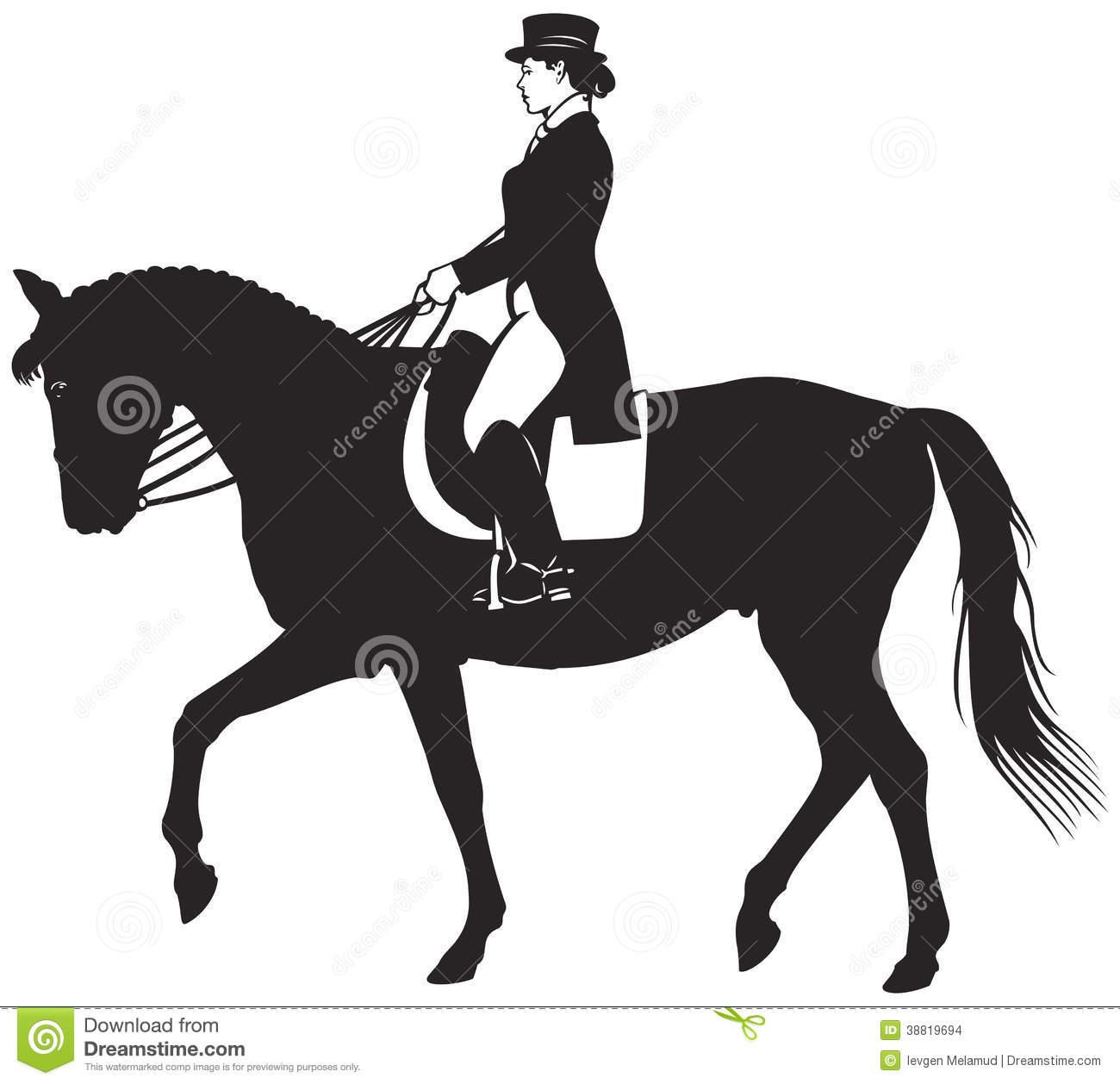 Horsewoman Stock Illustrations.