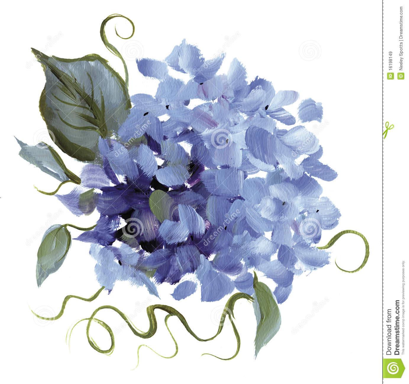 Free clipart hydrangea flowers.