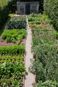 Layout, Gardens and Vegetable garden on Pinterest.