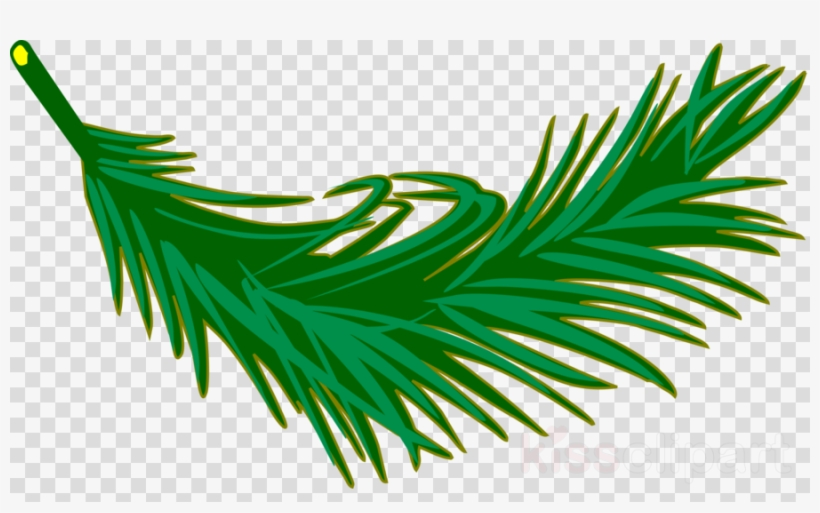 Palm Leaves Clipart Palm Trees Clip Art.