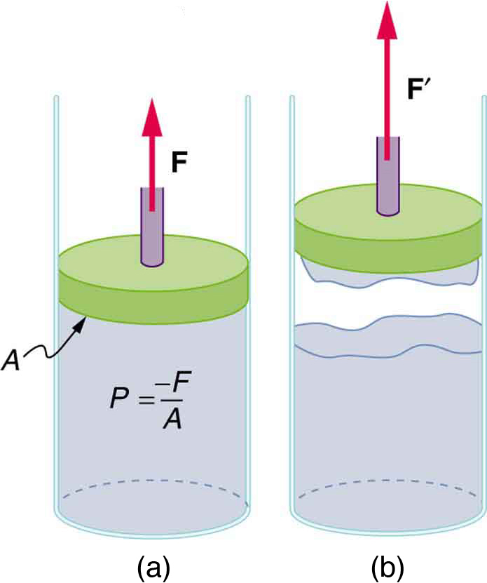 Cohesion and Adhesion in Liquids: Surface Tension and Capillary.