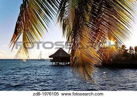 Stock Image of hotel intercontinental in tahiti island. zd8.