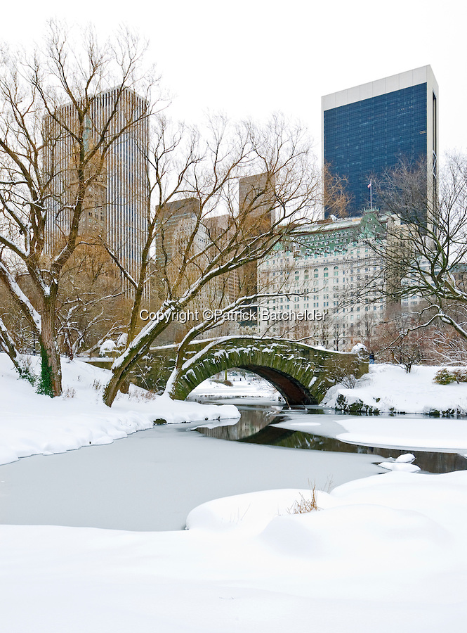 Winter Scenes in New York City.