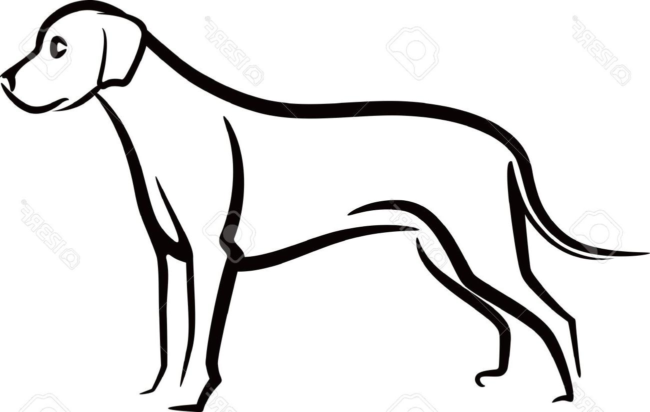 Hound with floppy hat sniffing clipart clipart images.