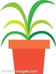 Clip Art House Plant Clipart.