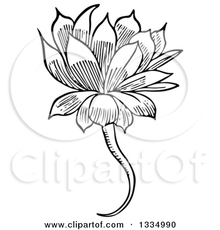 Royalty Free Flower Illustrations by Picsburg Page 1.