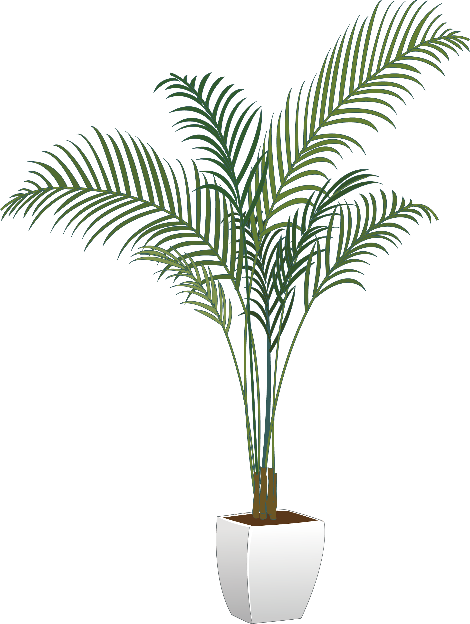 House Plant Png , (+) Pictures.