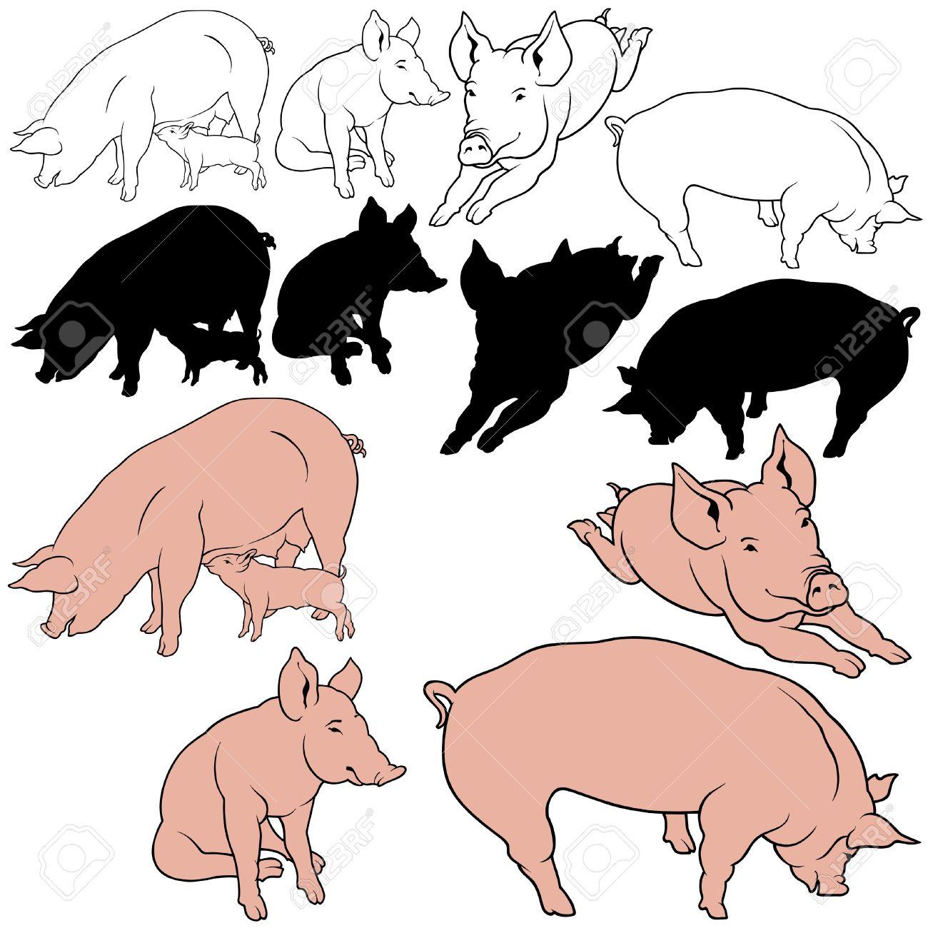 Pig Set 03.