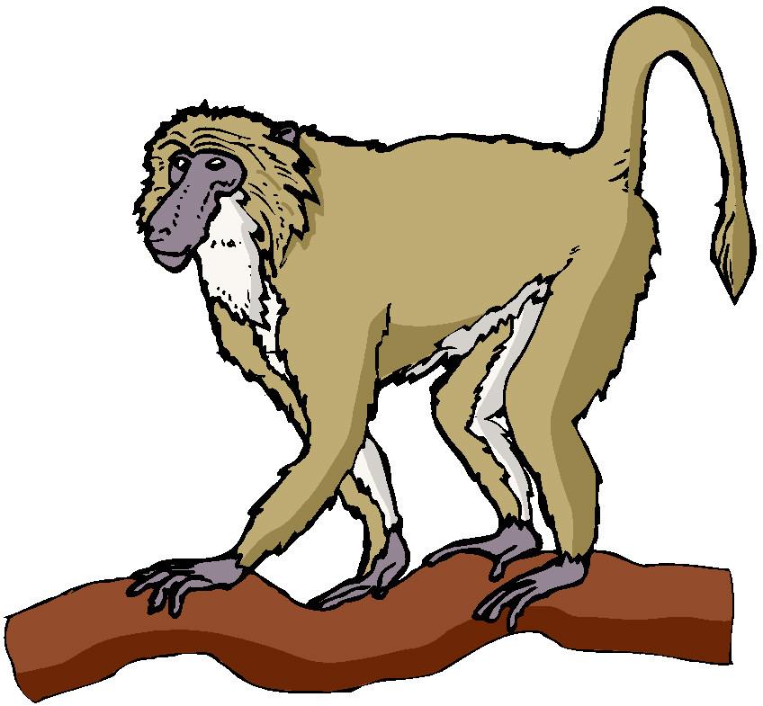 Howler monkey clipart.