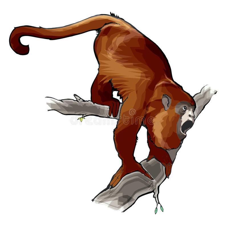 Howler Monkey Stock Illustrations.