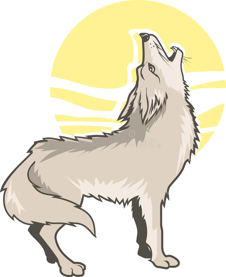 Howling Coyote Stock Illustrations.