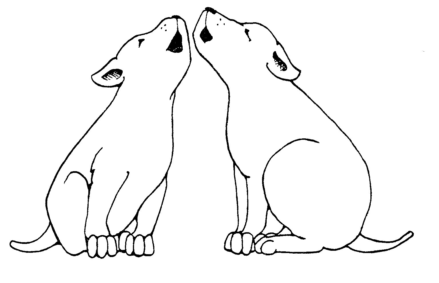 It is a picture of Versatile Dog Barking Drawing