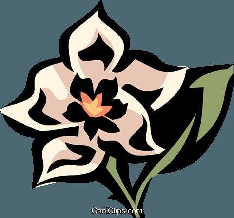 hoya Royalty Free Vector Clip Art illustration.