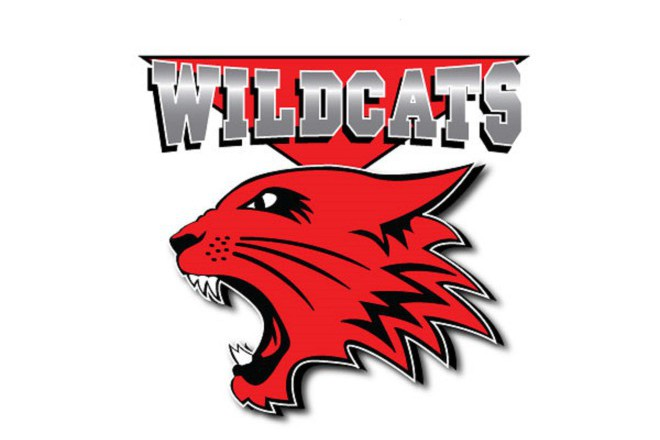 High School Musical Wildcats Logo.