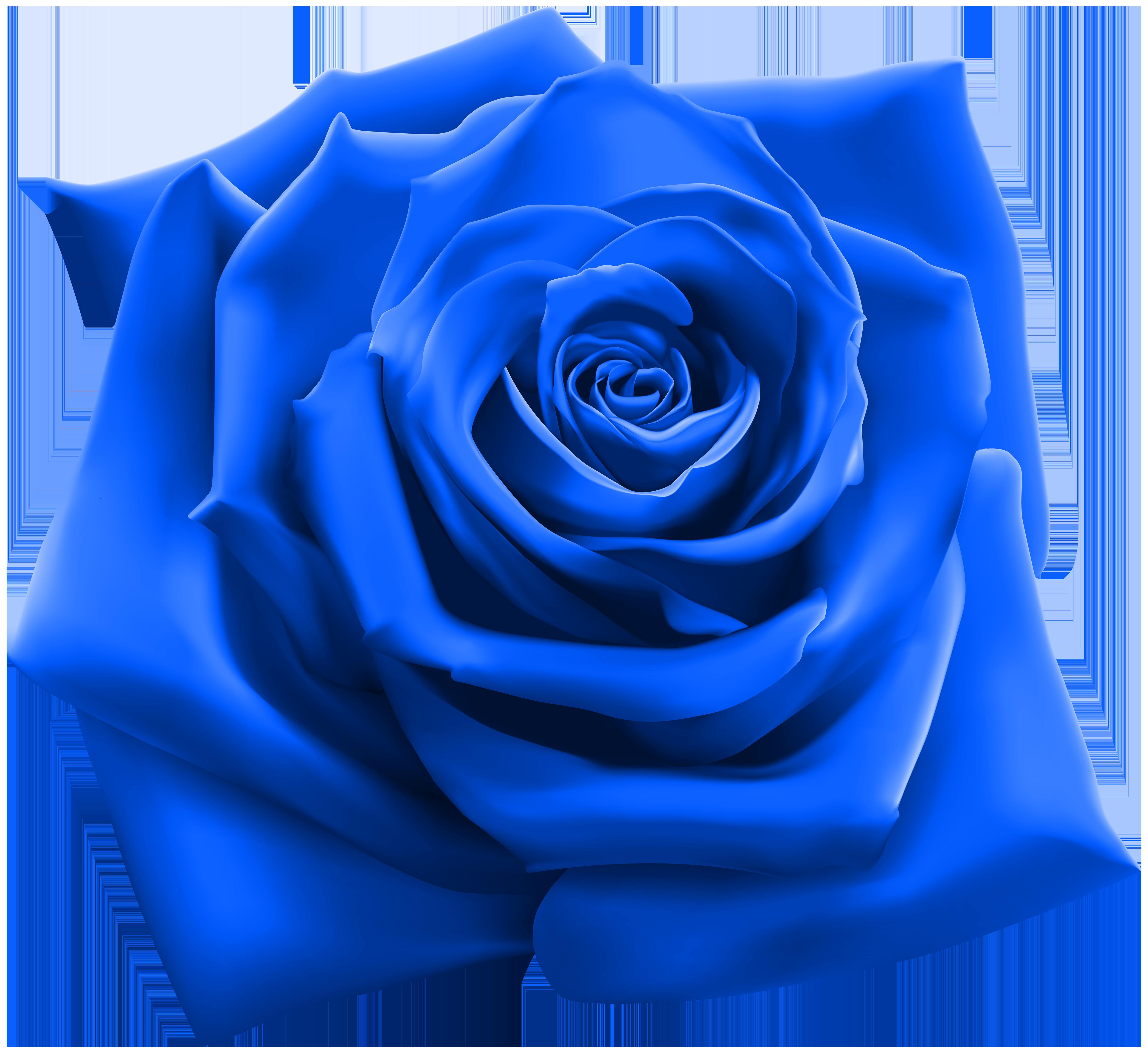 Https www google com images hpp blue internaut 96x96 png.