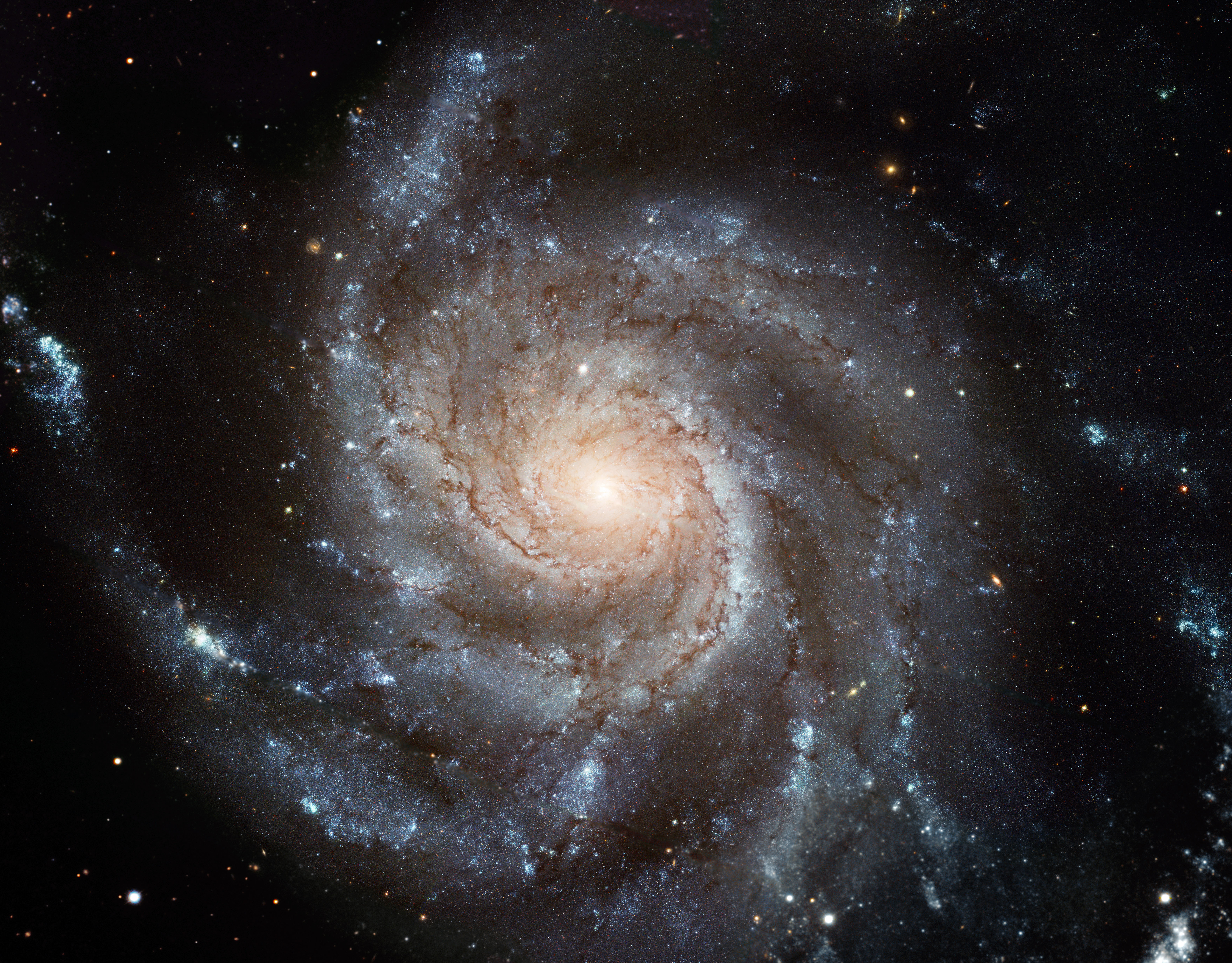 Stock Photography: Hubble Space Telescope Image of Messier 101.
