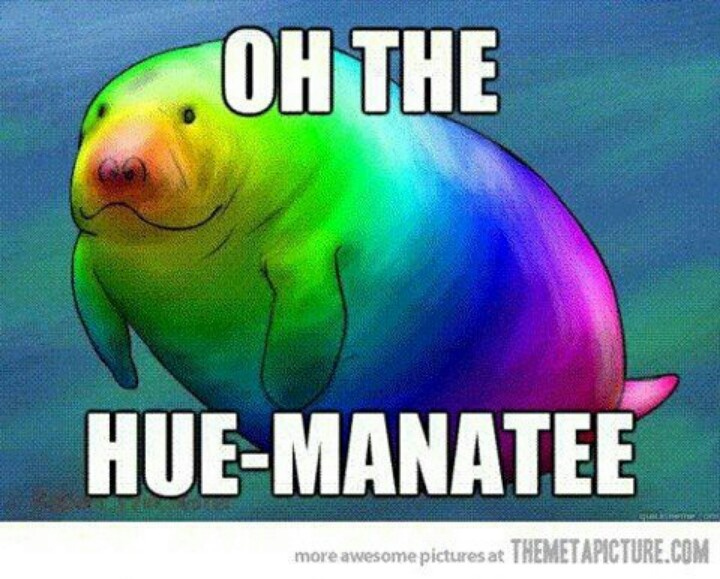 Oh the hue.