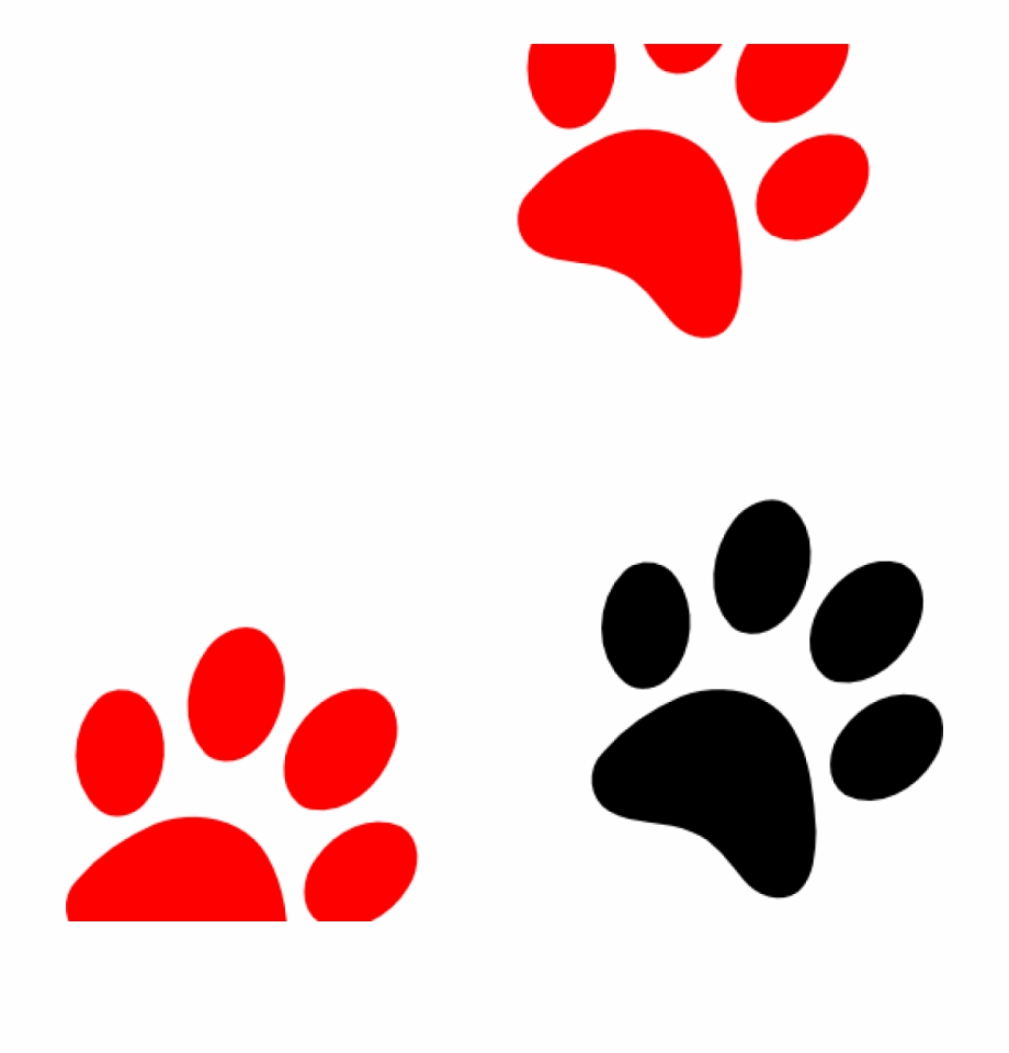 Paw Print Clip Art Camping Clipart.