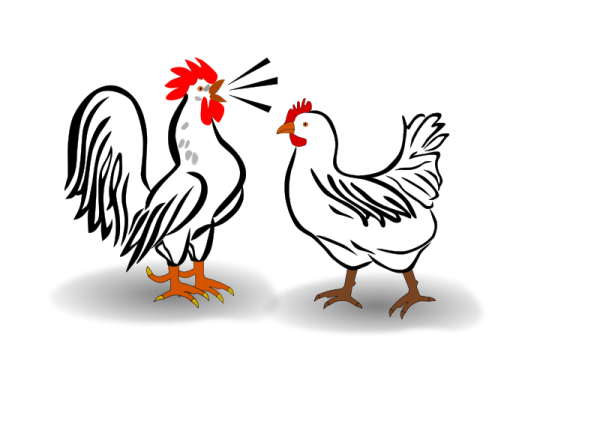 Huhn Free Stock Clipart.