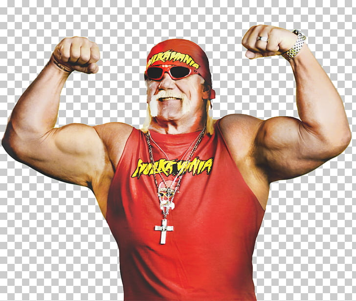 Hulk Hogan WWE Raw WWE Championship Professional Wrestler.