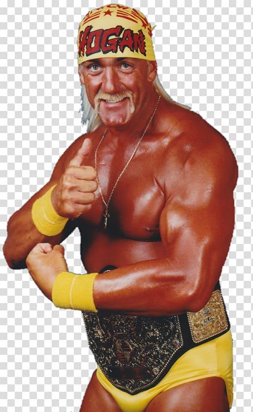 Hulk Hogan WCW World Heavyweight Championship World.