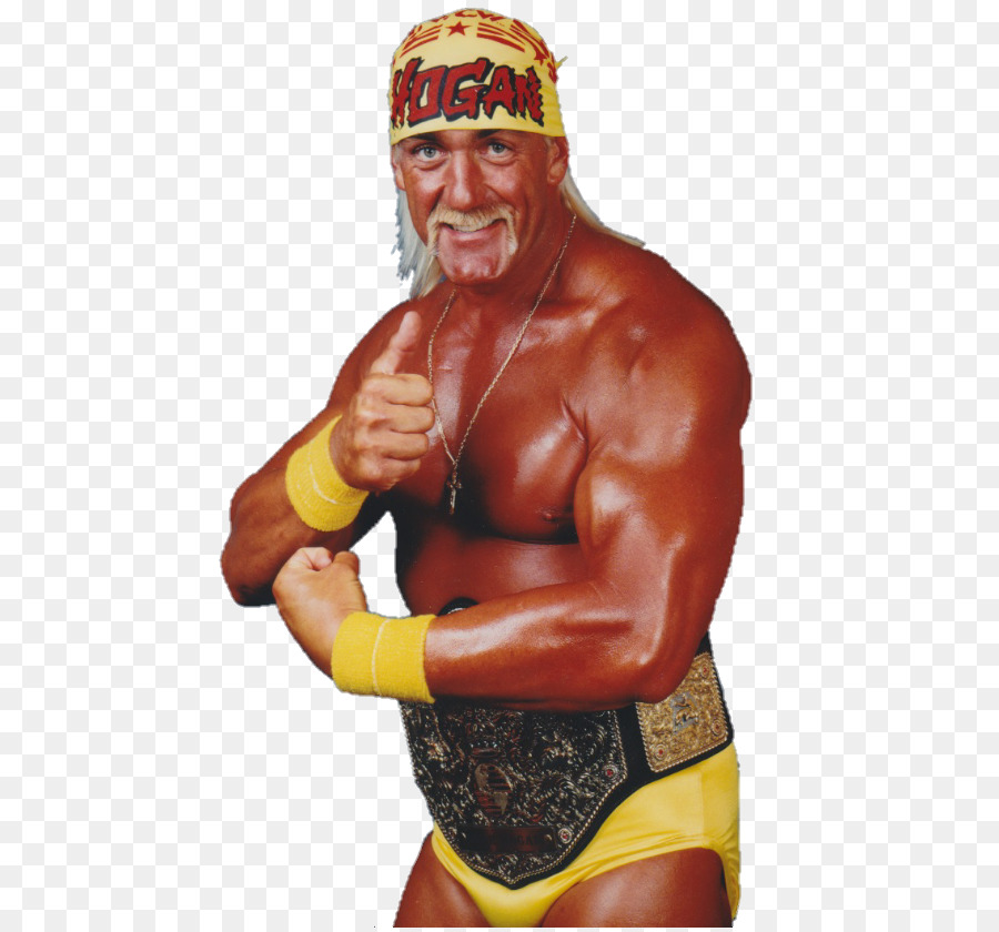 Hulk Hogan Png & Free Hulk Hogan.png Transparent Images #29544.