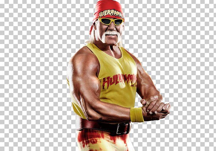 Hulk Hogan WWE 2K15 Desktop New World Order World Championship.