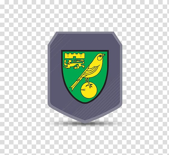 Norwich City F.C. FIFA 18 EFL Championship Hull City English.