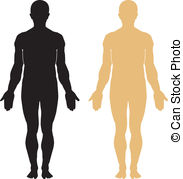 Anatomy Clipart and Stock Illustrations. 85,486 Anatomy vector EPS.