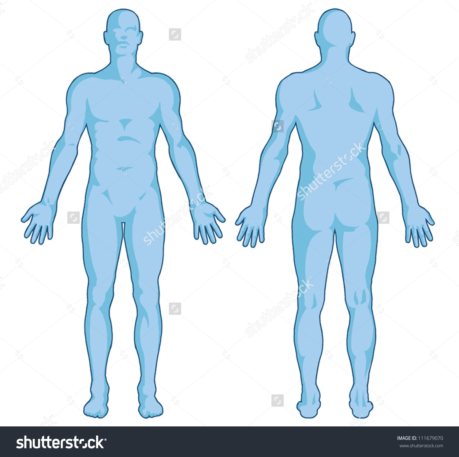 Male Body Shapes Human Body Outline Stock Vector 111679070.