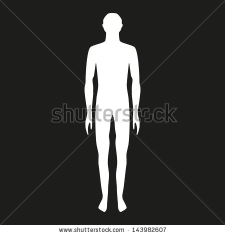 Male Body Shapes Human Body Outline Stock Vector 143982607.