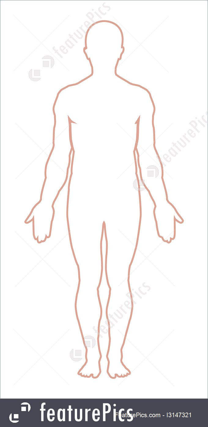 Wildlife: Male Body Outline. Vector.