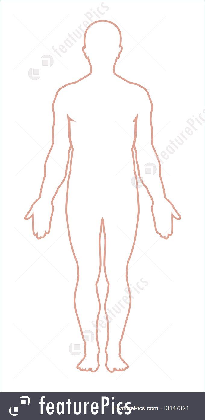 Wildlife: Male Body Outline. Vector.