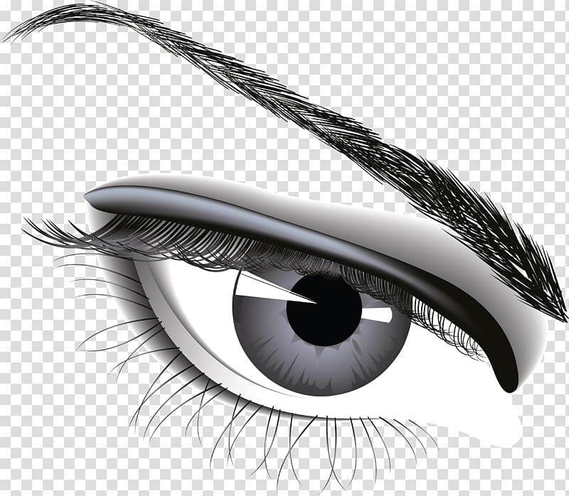 Human eye , Eye , Eye transparent background PNG clipart.