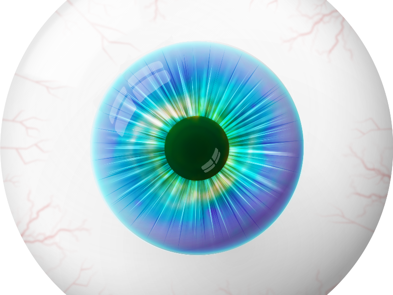 Human Cartoon Eye Image PNG (Isolated.
